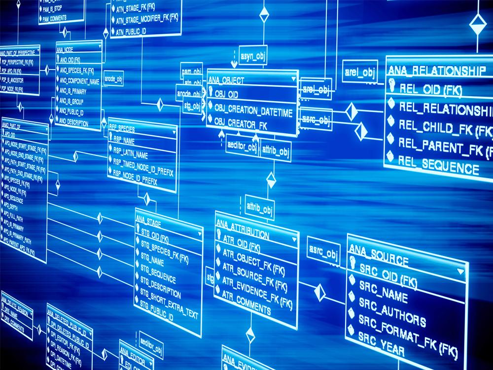 Veri Tabanı Uzmanı Nedir - Nasıl Olunur